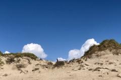 Ulfborg Middlejüdland  dunes